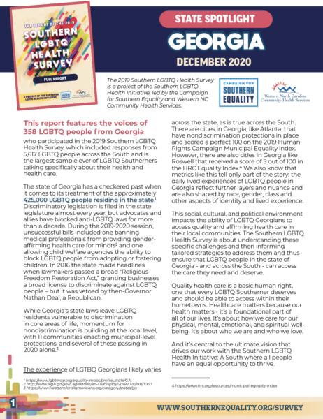 Georgia Survey Report Cover